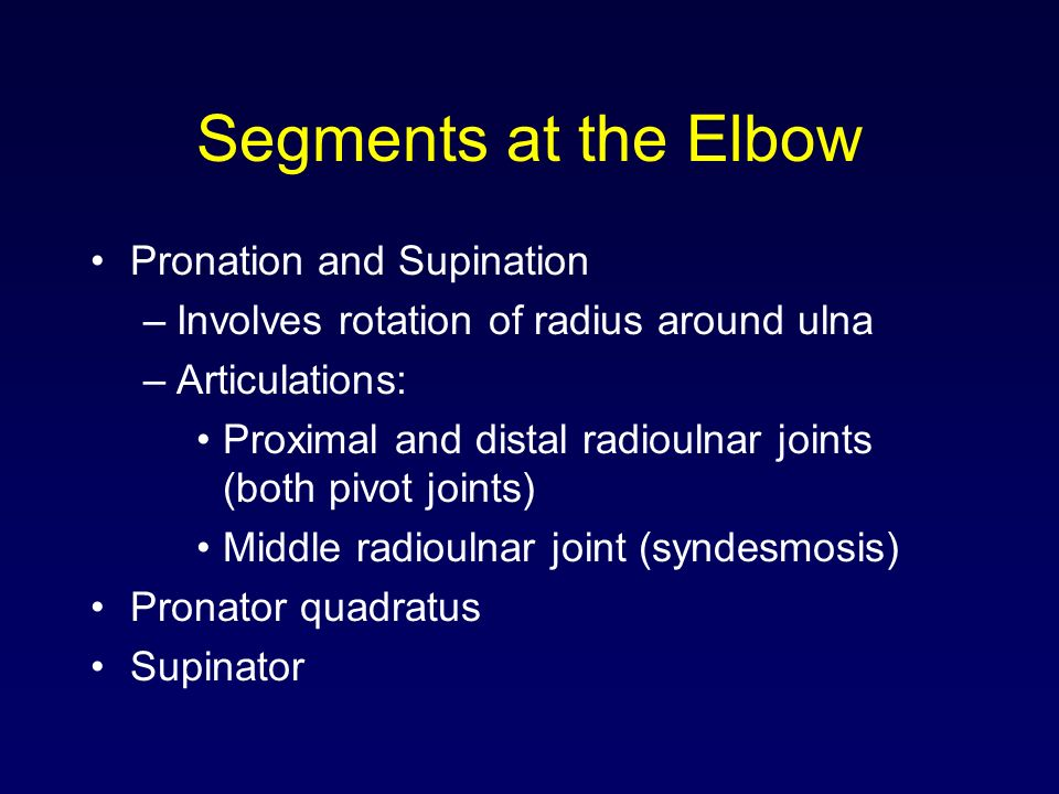 Segments at the Elbow Pronation and Supination