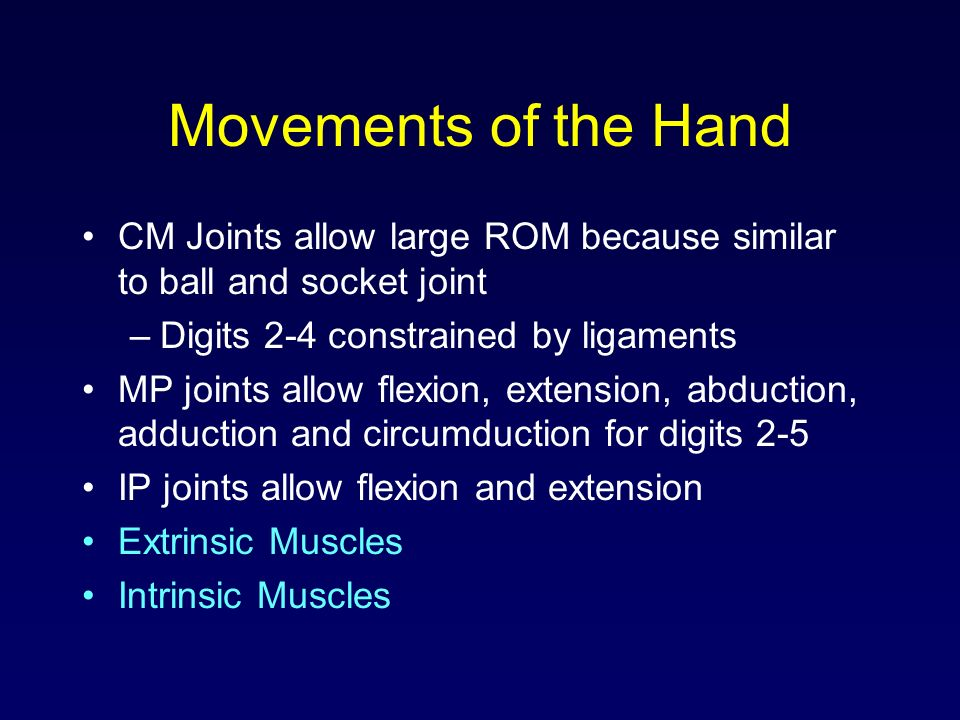 Movements of the Hand CM Joints allow large ROM because similar to ball and socket joint. Digits 2-4 constrained by ligaments.