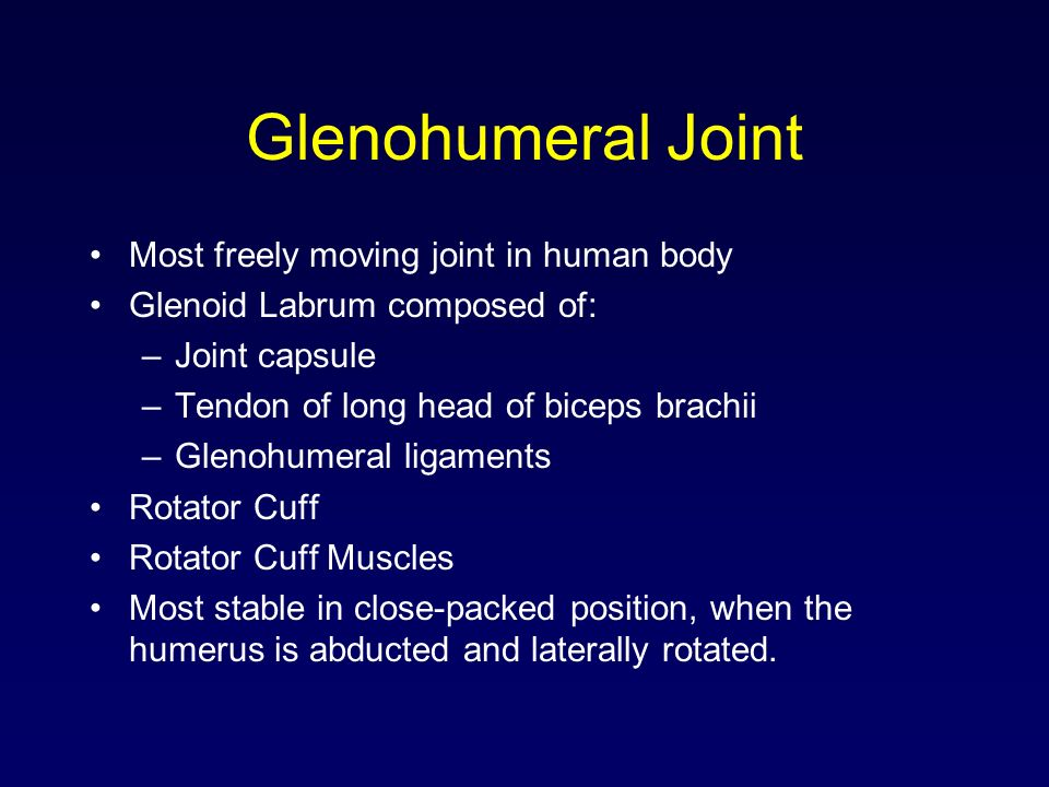 Glenohumeral Joint Most freely moving joint in human body