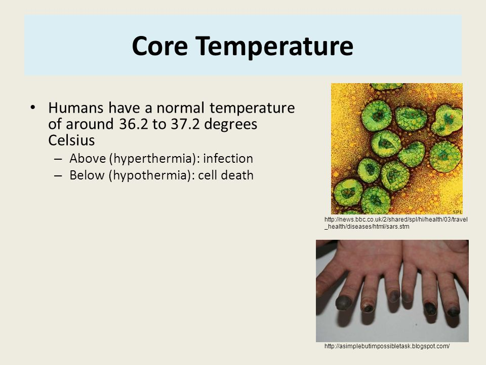 Core Temperature Humans have a normal temperature of around 36.2 to 37.2 degrees Celsius. Above (hyperthermia): infection.