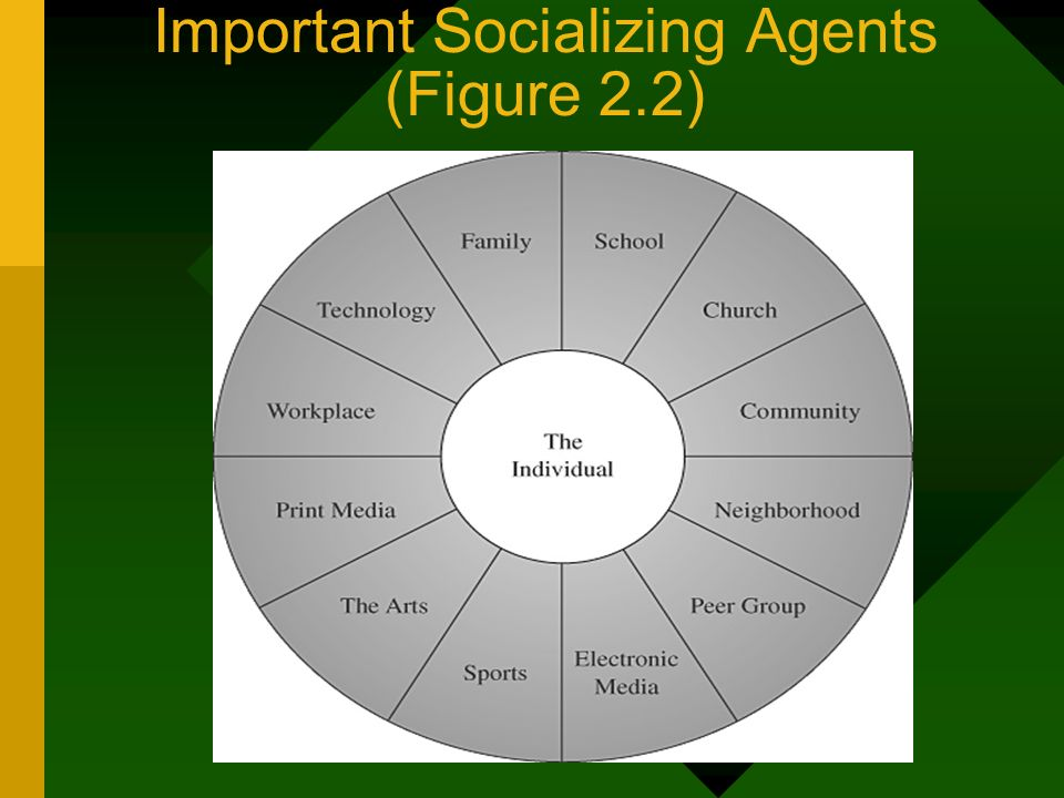 Important Socializing Agents (Figure 2.2)