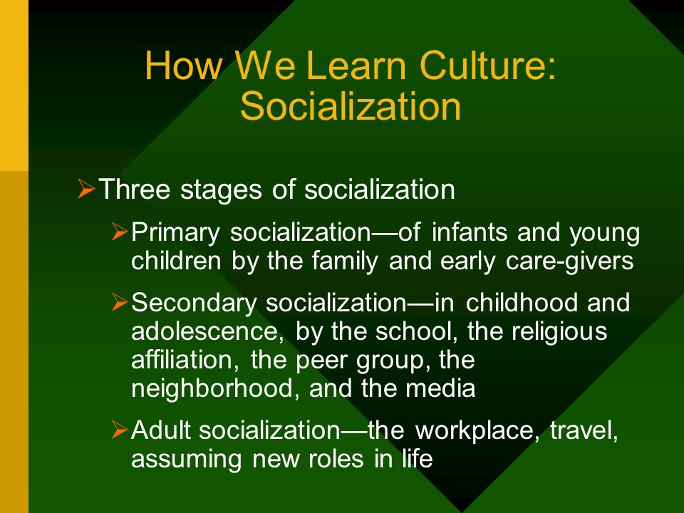 How We Learn Culture: Socialization