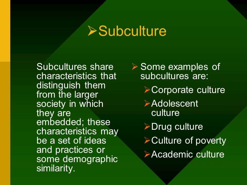 Subculture Some examples of subcultures are: Corporate culture