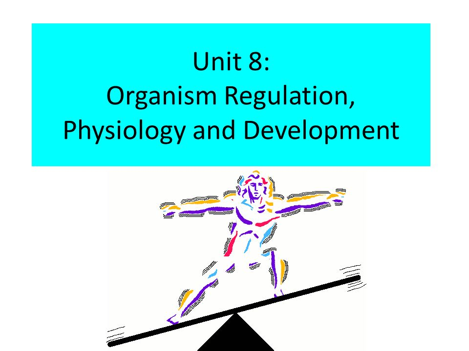 organism physiology Anatomy & physiology  levels of organization, the major levels of organization in the human organism from the chemical and cellular levels to the tissues,.