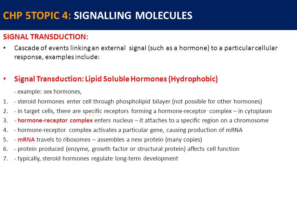 unlike peptide hormones steroid hormones