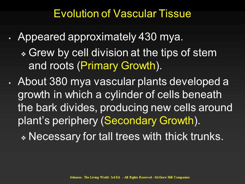 Evolution of Vascular Tissue