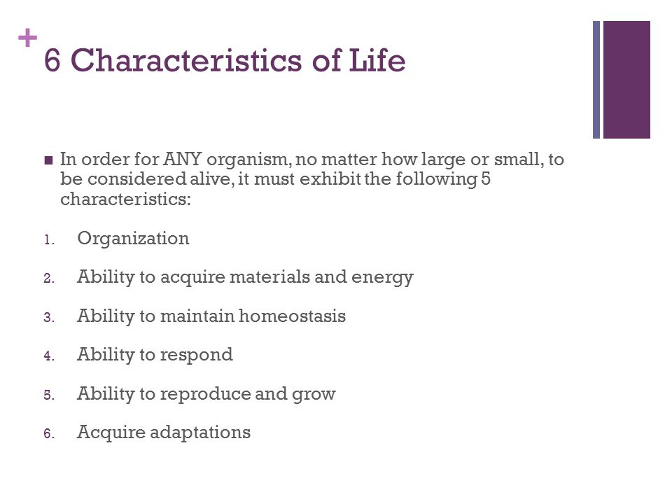 The Characteristics of Life - ppt download