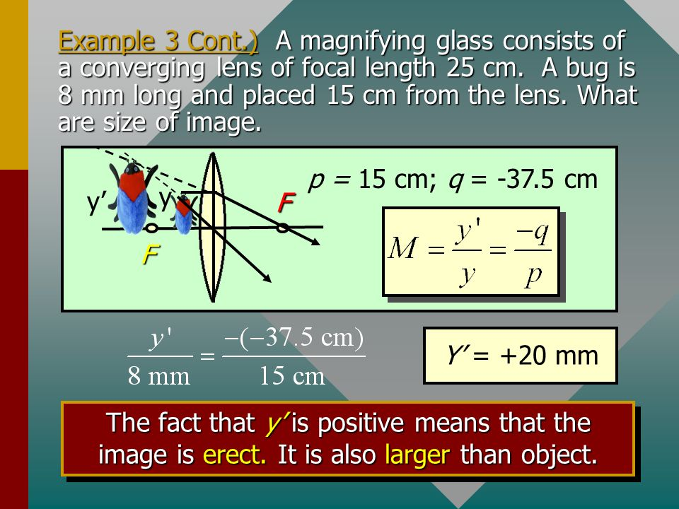 Example 3 Cont.) A magnifying glass consists of a converging lens of focal length 25 cm. A bug is 8 mm long and placed 15 cm from the lens. What are size of image.