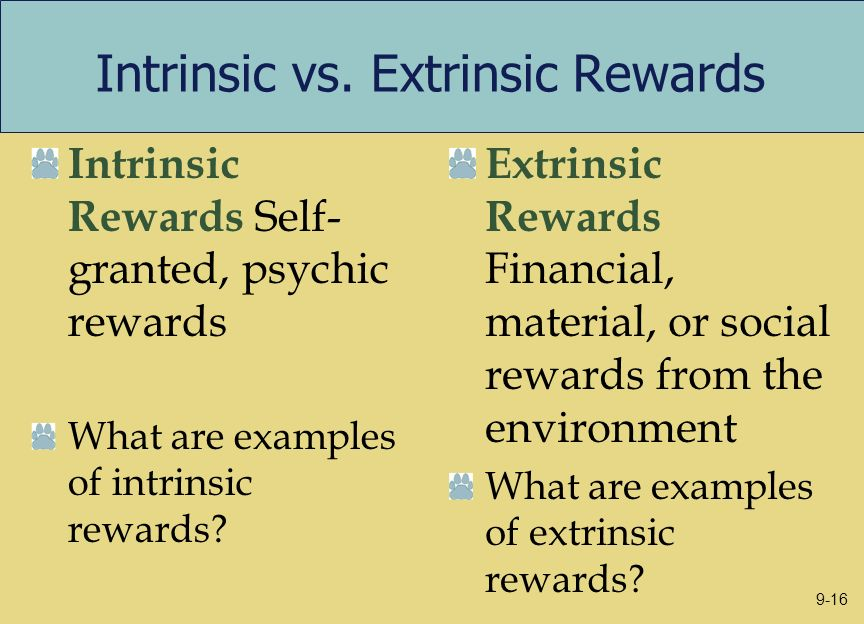 Intrinsic vs. Extrinsic Rewards