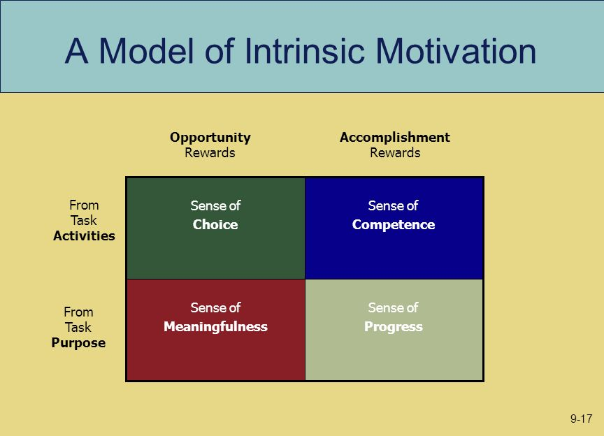 A Model of Intrinsic Motivation