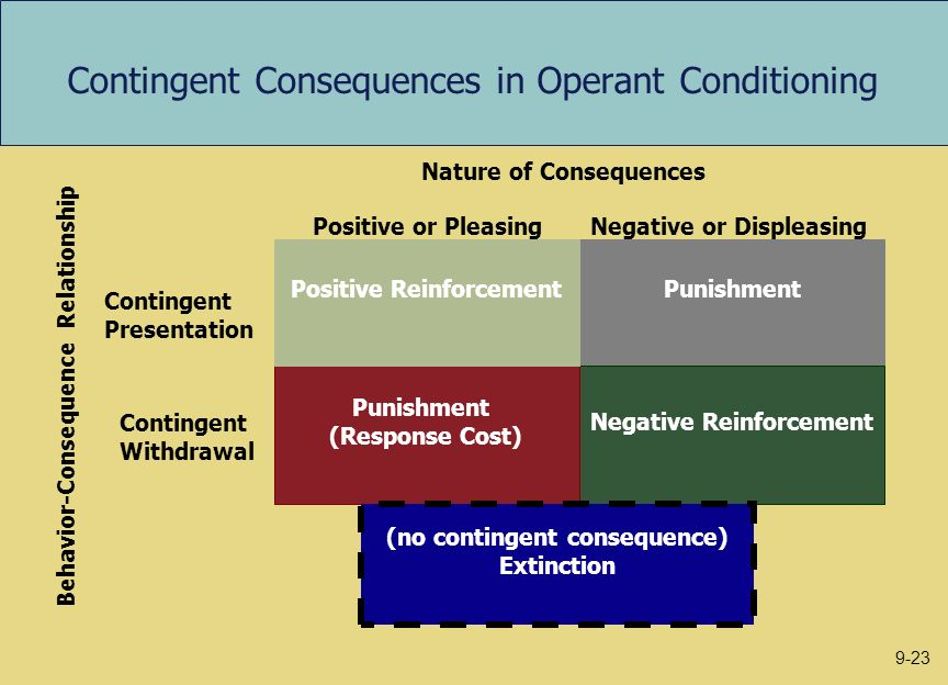 Contingent Consequences in Operant Conditioning