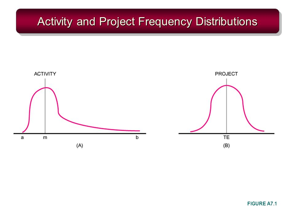 Activity and Project Frequency Distributions