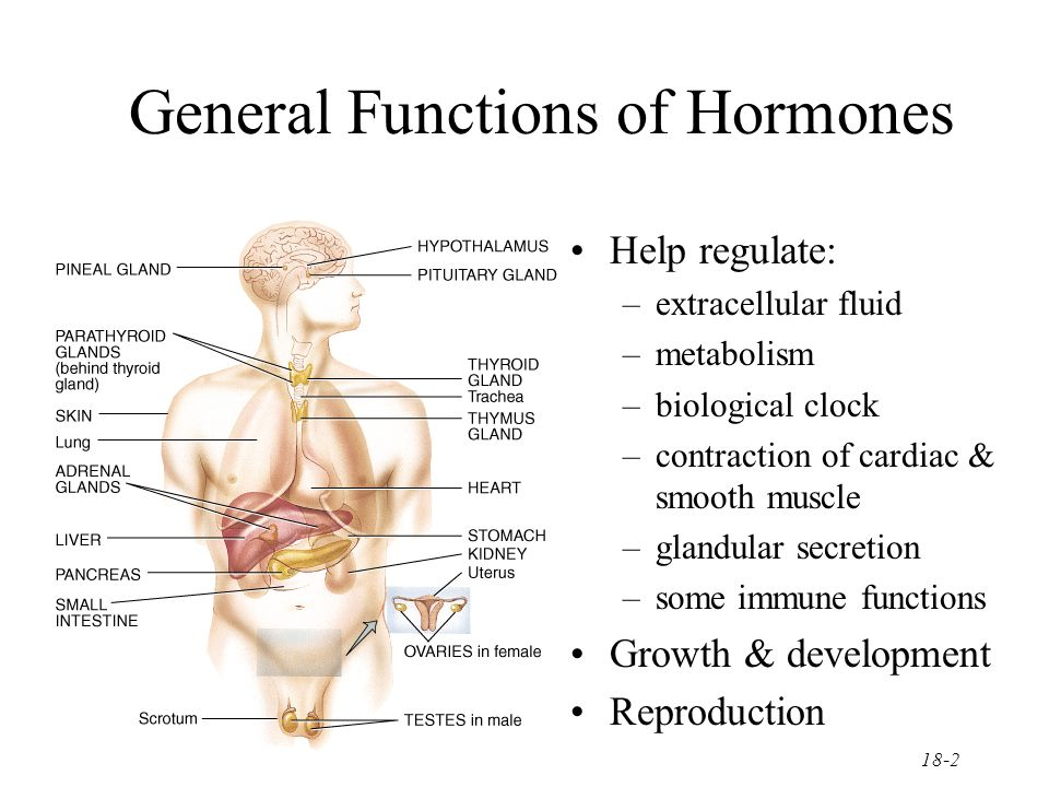 effects of hormone pre treatment and varying Hormone replacement therapy has a lot of side effects like digestive issues, unusual bleeding, and breast cancer be sure to check before undergoing one hormone replacement therapy (hrt) can cause digestive issues, breast tenderness, and leg cramps.