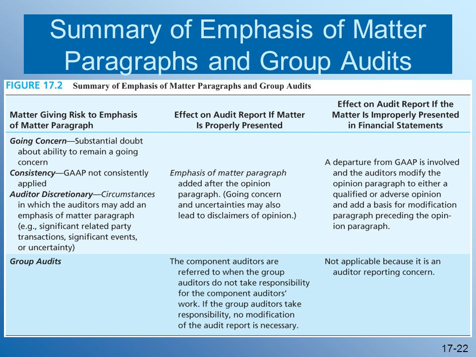 Summary of Emphasis of Matter Paragraphs and Group Audits