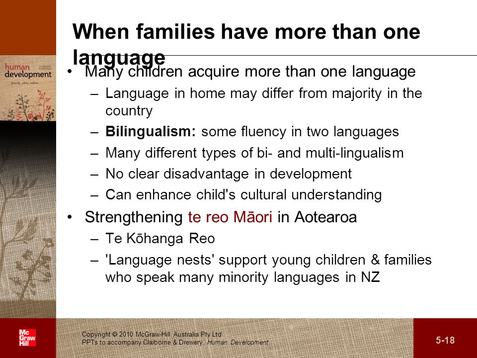When families have more than one language