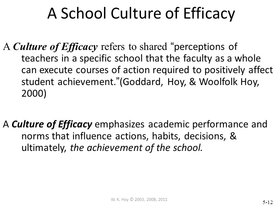 A School Culture of Efficacy