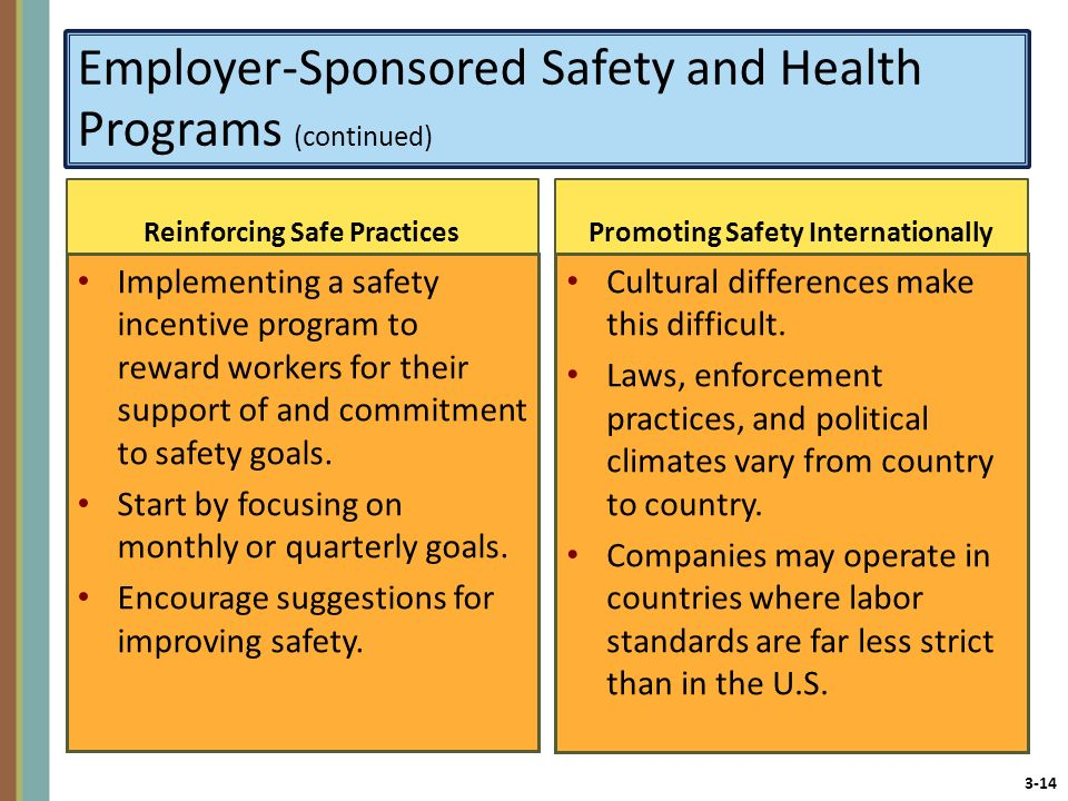 Employer-Sponsored Safety and Health Programs (continued)