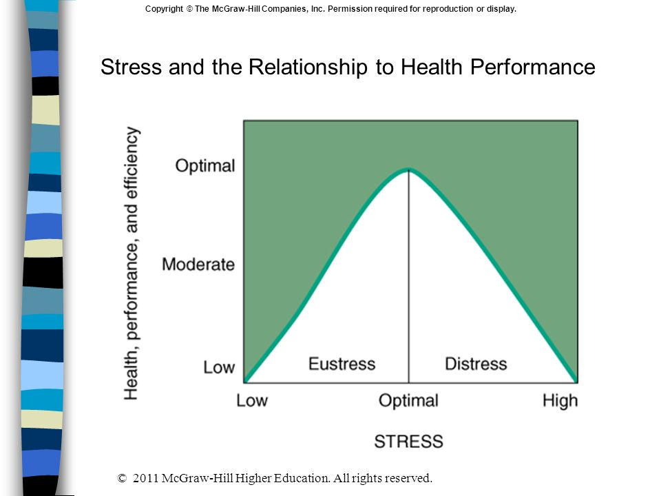 Stress and the Relationship to Health Performance