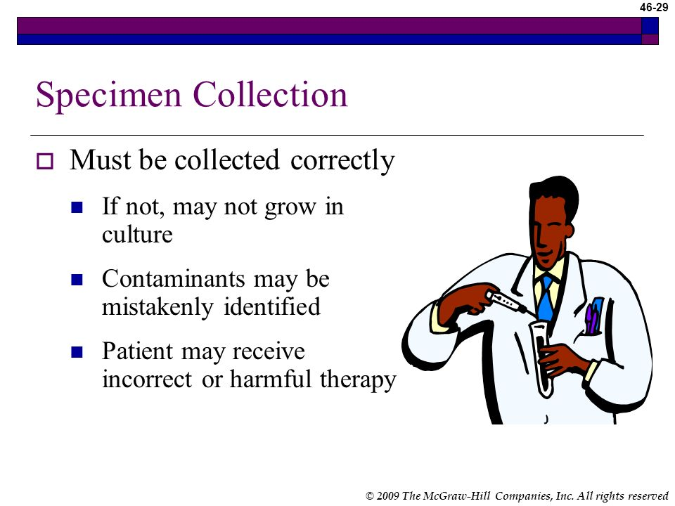 Specimen Collection Must be collected correctly