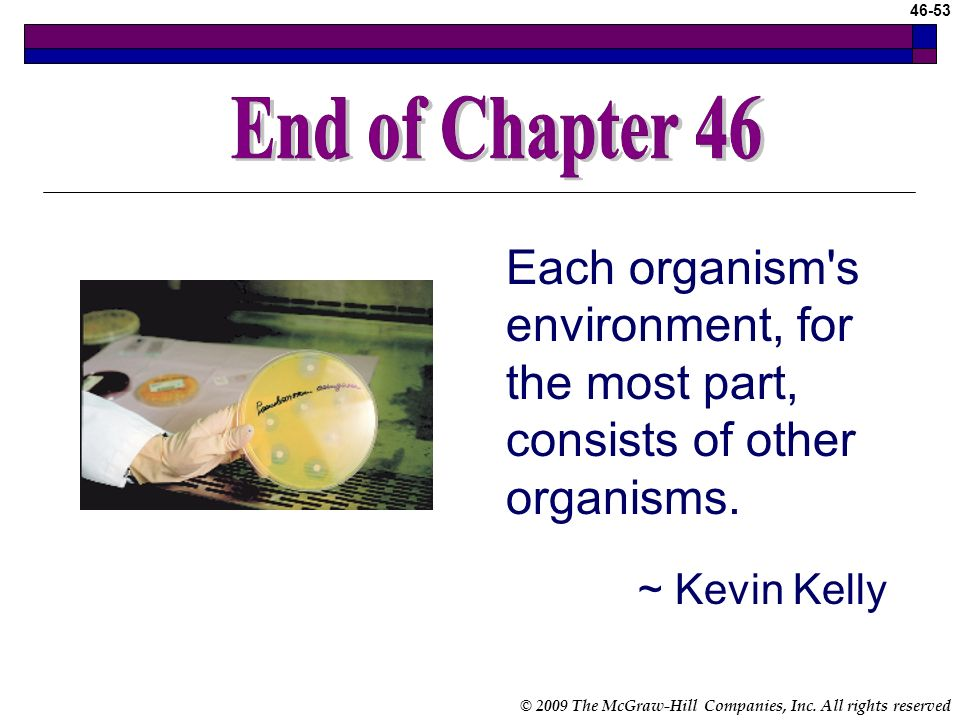End of Chapter End of Chapter 46. Each organism s environment, for the most part, consists of other organisms.