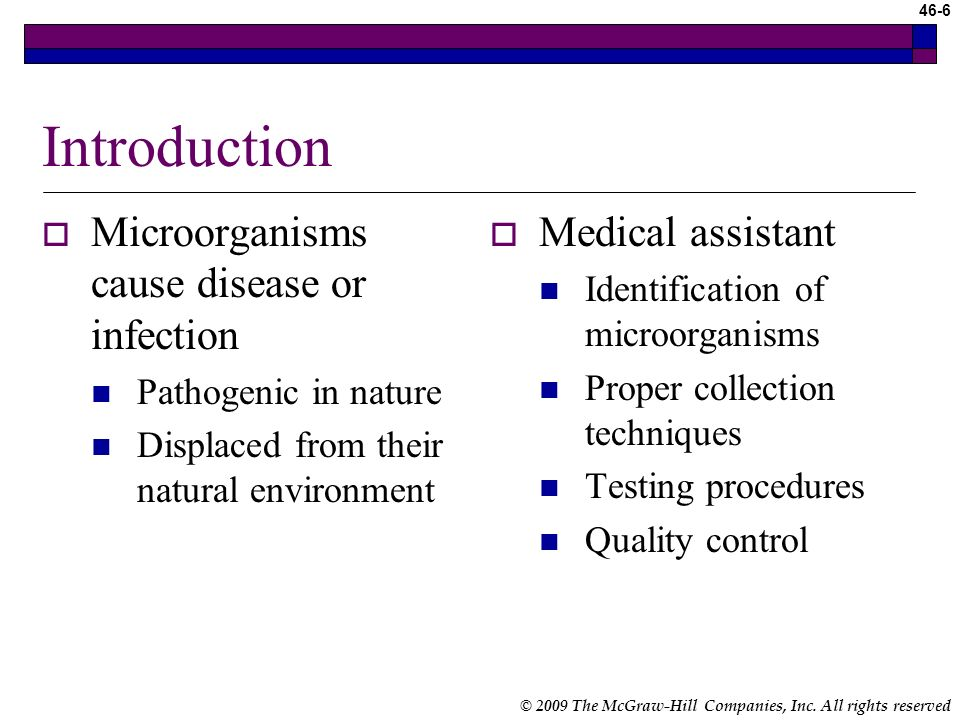 Introduction Microorganisms cause disease or infection