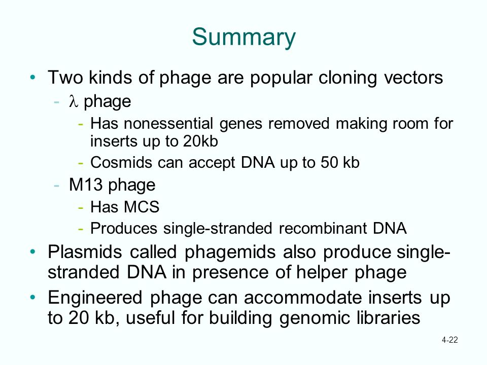 Summary Two kinds of phage are popular cloning vectors