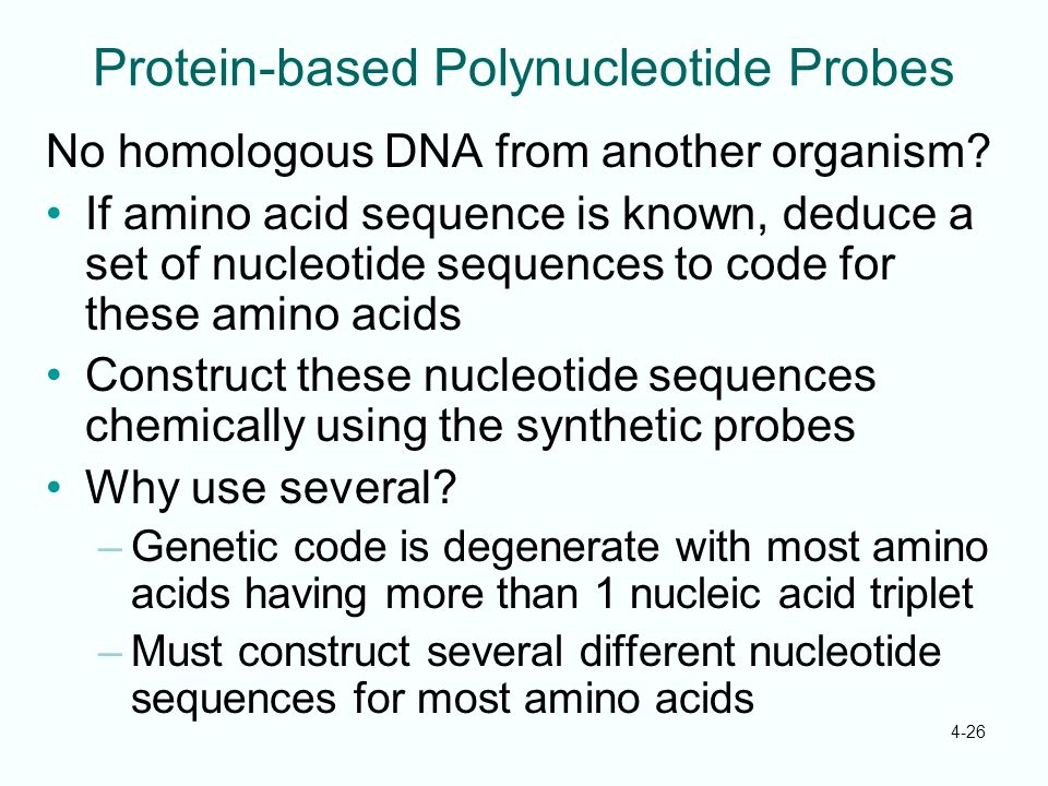 Protein-based Polynucleotide Probes