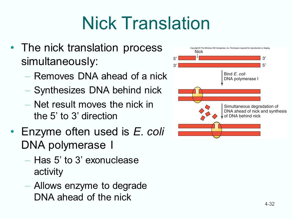 Nick Translation The nick translation process simultaneously: