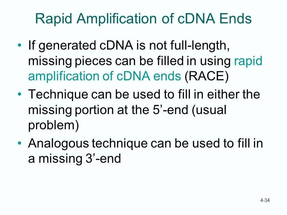 Rapid Amplification of cDNA Ends