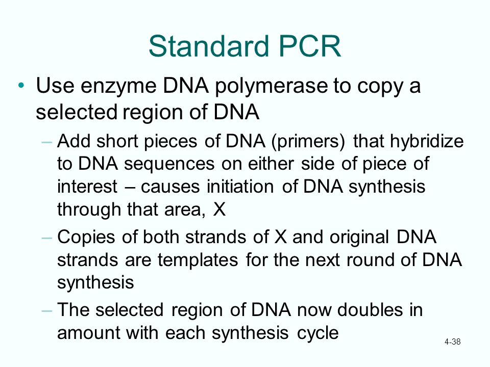 Standard PCR Use enzyme DNA polymerase to copy a selected region of DNA.