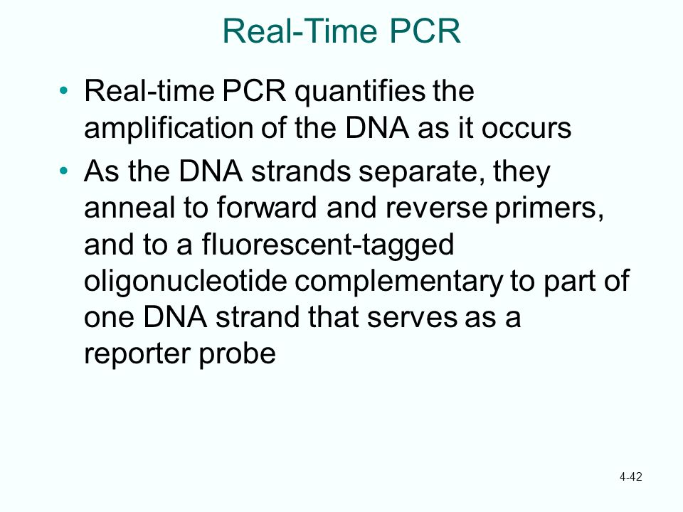 Real-Time PCR Real-time PCR quantifies the amplification of the DNA as it occurs.