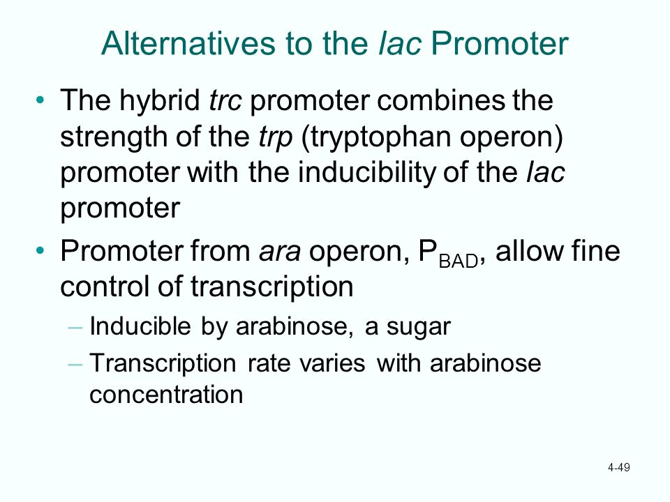 Alternatives to the lac Promoter