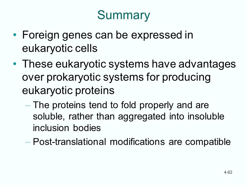 Summary Foreign genes can be expressed in eukaryotic cells