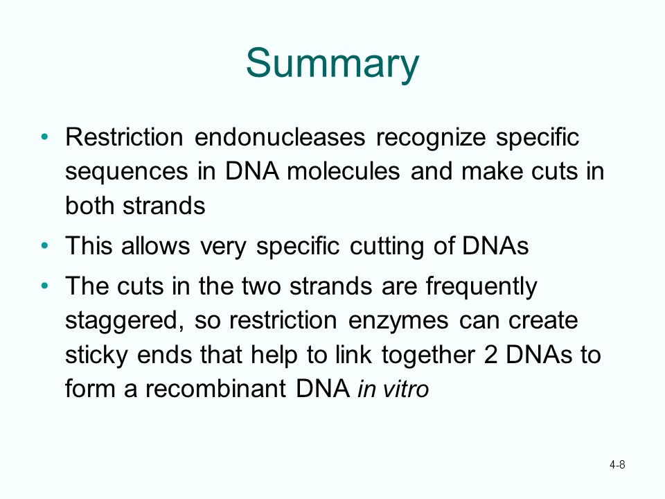 Summary Restriction endonucleases recognize specific sequences in DNA molecules and make cuts in both strands.
