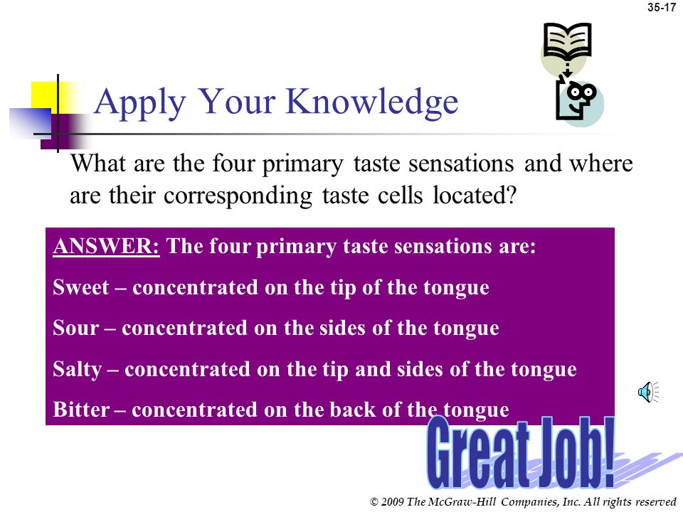 Apply Your Knowledge Great Job!