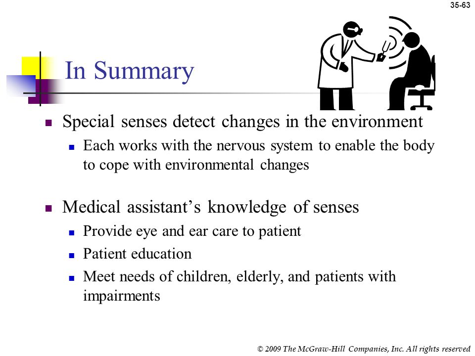 In Summary Special senses detect changes in the environment