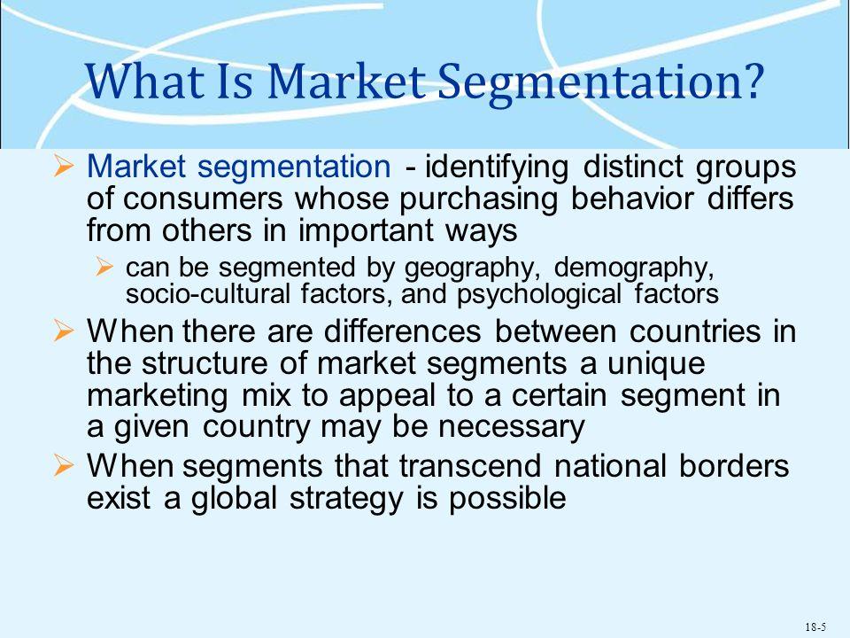 What Is Market Segmentation