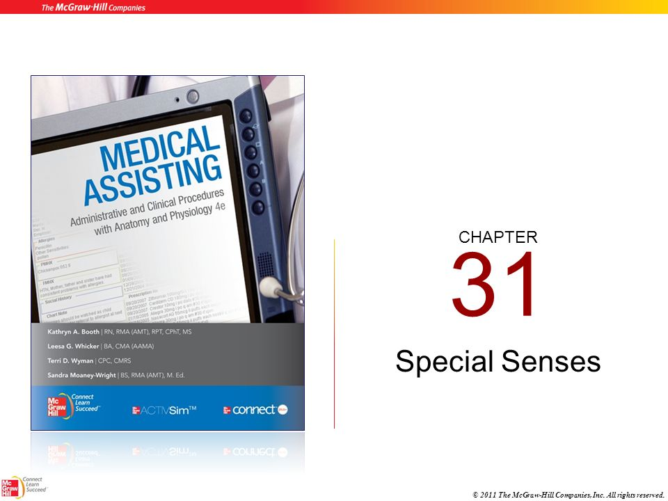 31 Special Senses