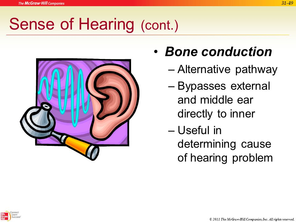 Sense of Hearing (cont.)