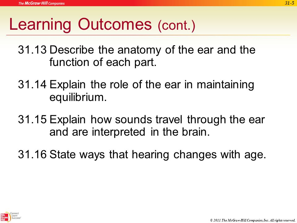 Learning Outcomes (cont.)