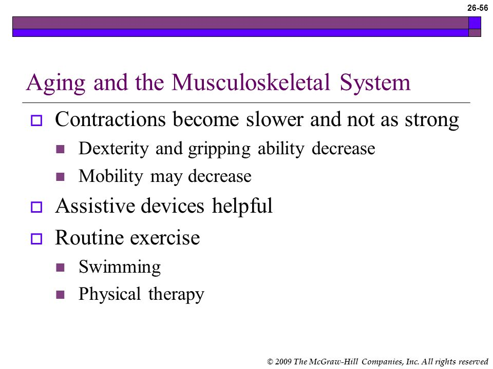 the aging musculoskeletal system 2 essay The musculoskeletal system provides stability and allows for movement of the body, and includes the bones, muscles, joints, tendons, and more.
