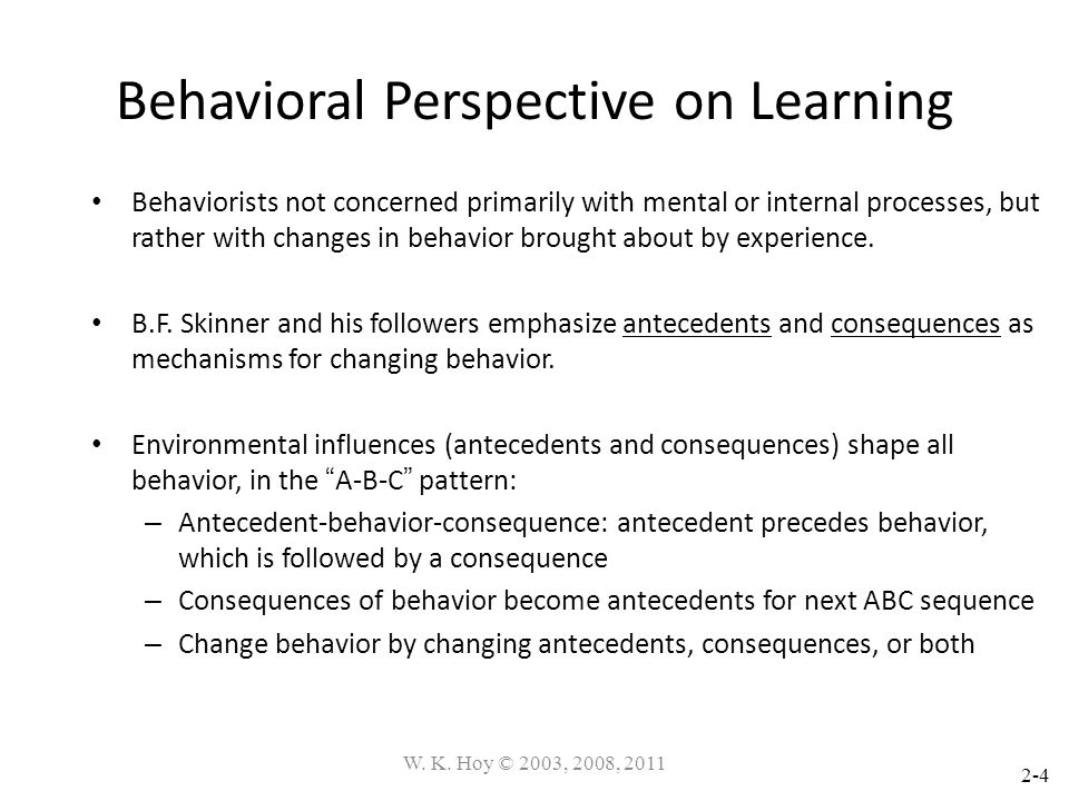 Behavioral Perspective on Learning