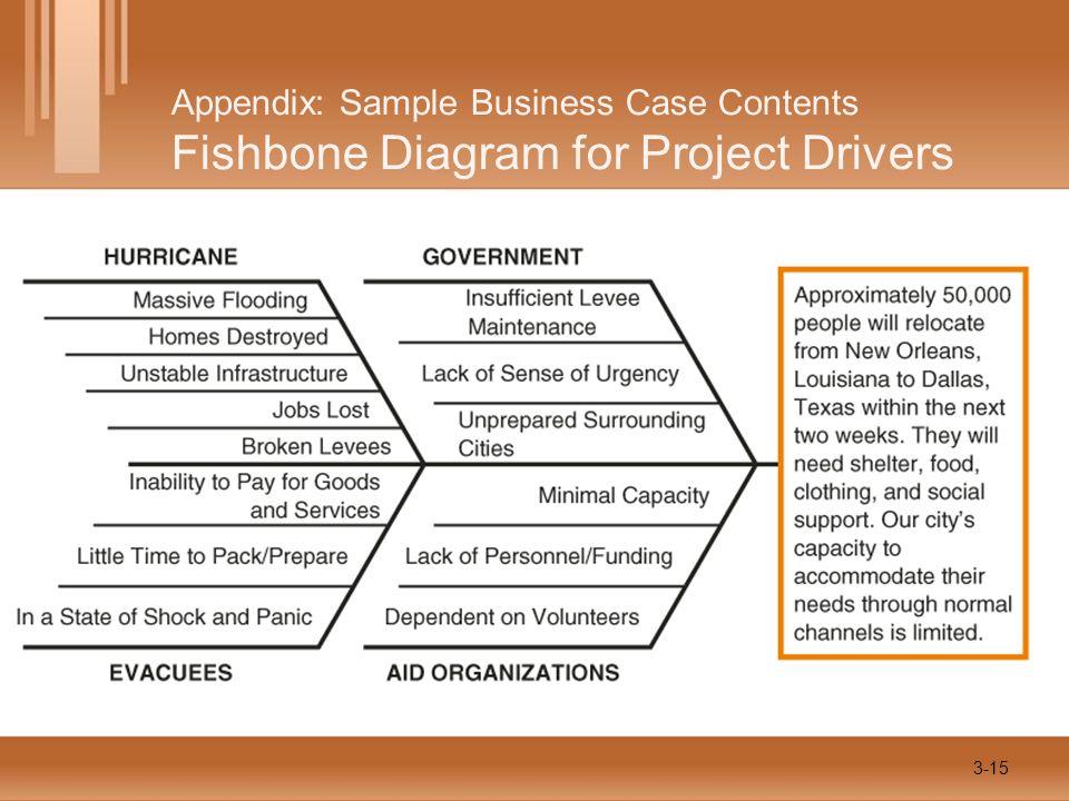 Appendix: Sample Business Case Contents Fishbone Diagram for Project Drivers