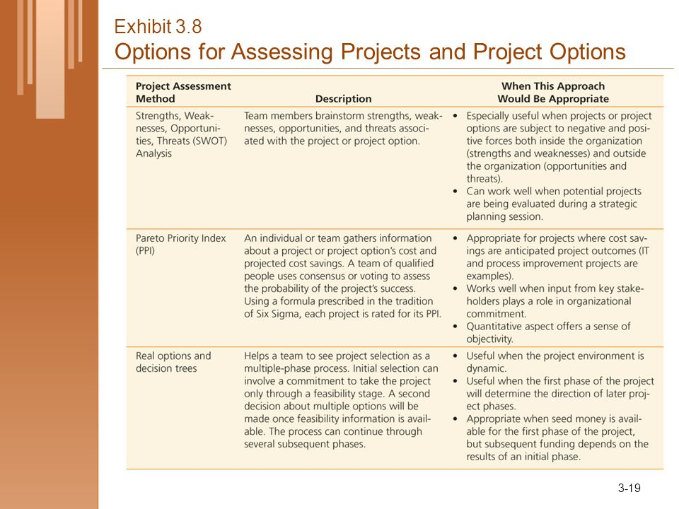 Exhibit 3.8 Options for Assessing Projects and Project Options