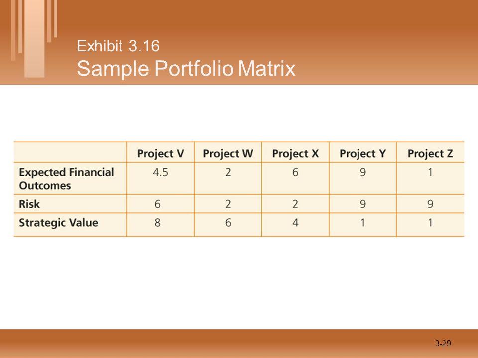 Exhibit 3.16 Sample Portfolio Matrix