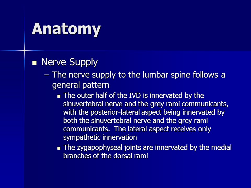AnatomyNerve Supply. The nerve supply to the lumbar spine follows a general pattern.