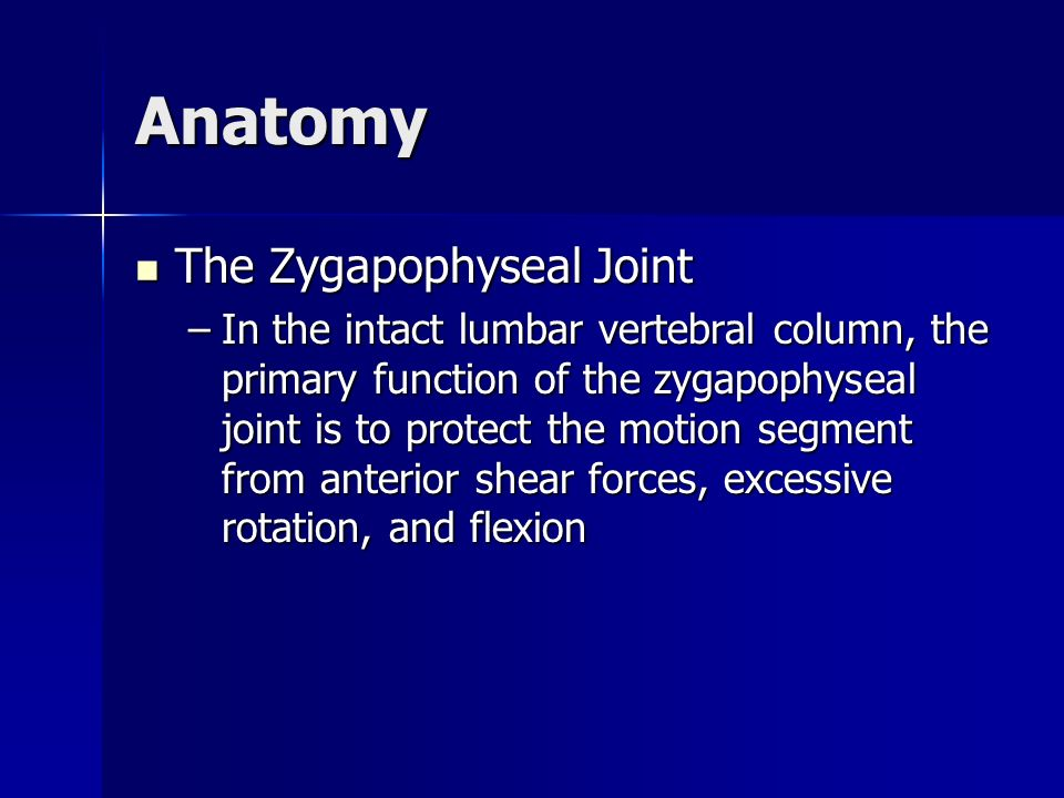 Anatomy The Zygapophyseal Joint
