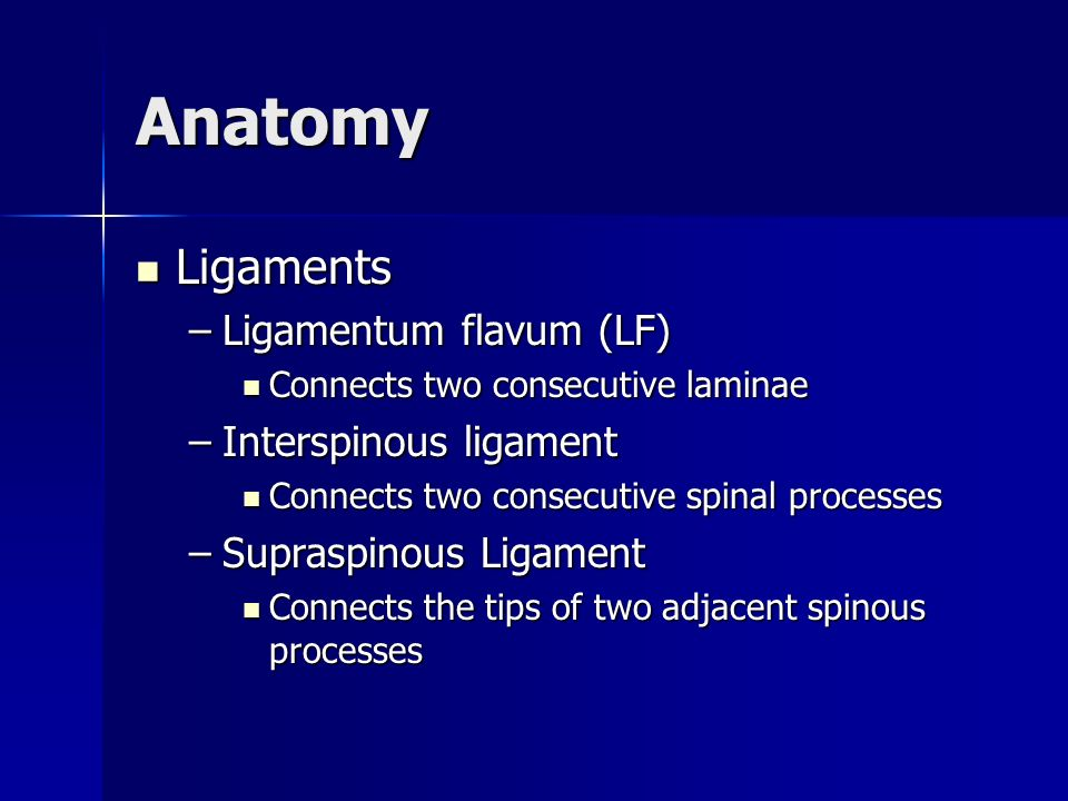 Anatomy Ligaments Ligamentum flavum (LF) Interspinous ligament