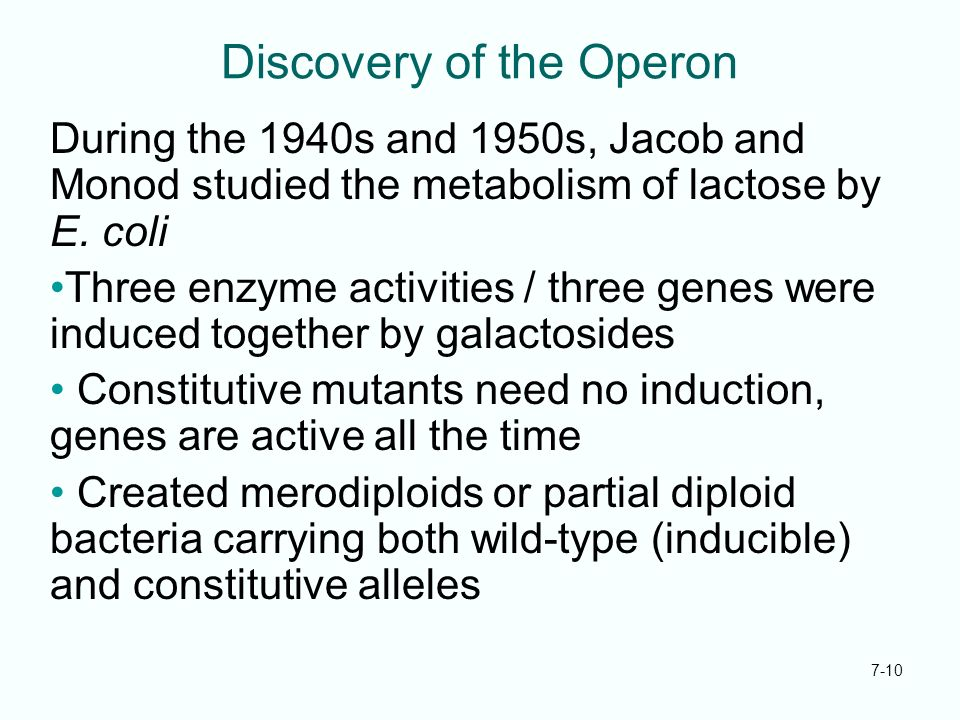 Discovery of the Operon