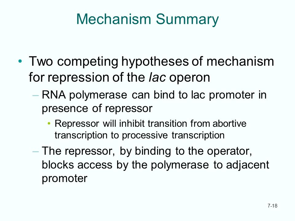 Mechanism Summary Two competing hypotheses of mechanism for repression of the lac operon.